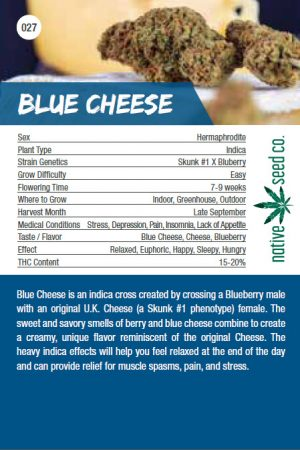 Native Seed Co. Collector Card - Blue Cheese - Back