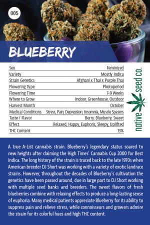 Native Seed Co. Collector Card - Blueberry - Back