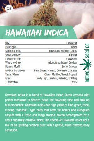 Native Seed Co. Collector Card - Hawaiian Indica - Back