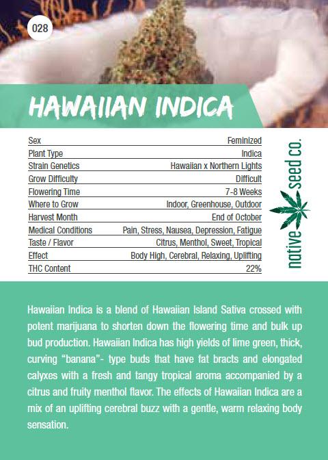 Native Seed Co. Collector Card - Hawaiian Indica - Back