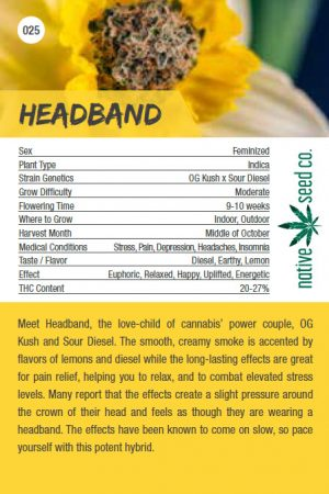 Native Seed Co. Collector Card - Headband - Back