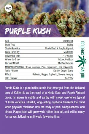Native Seed Co. Collector Card - Purple Kush - Back