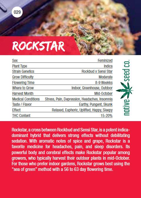 Native Seed Co. Collector Card - Rockstar - Back