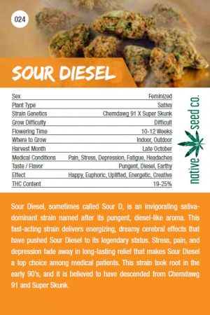 Native Seed Co. Collector Card - Sour Diesel - Back