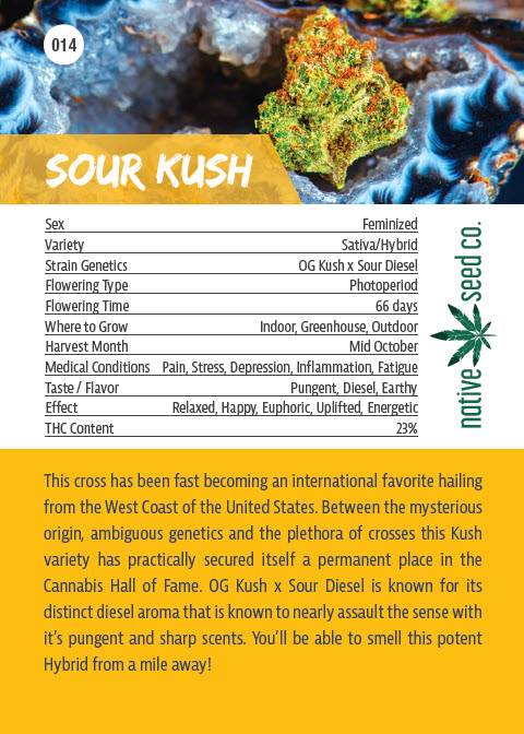 Back of Collector Seed Card by Native Seed - Sour Kush