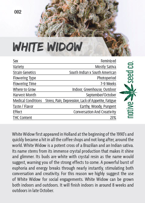Native Seed Co. Collector Card - Back - White Widow